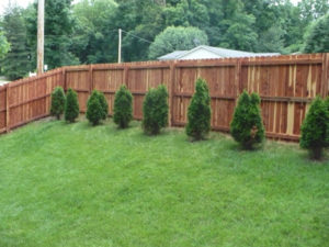 Wood Privacy Fence St Louis MO