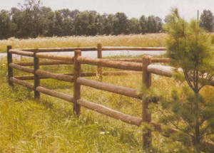 Fences Wildwood